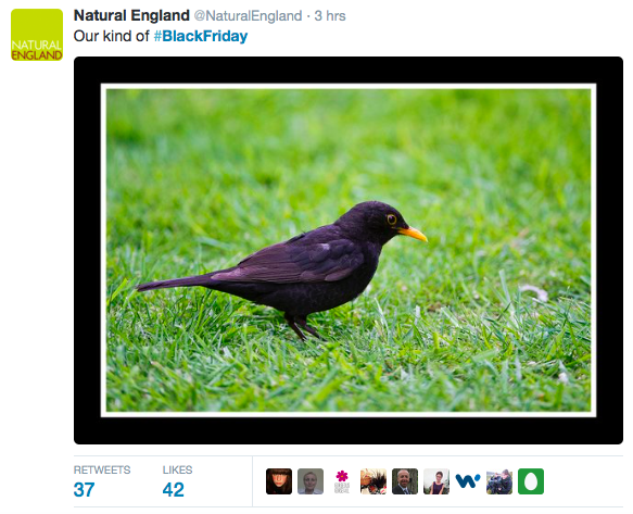 Natural-England-Black-Friday-tweet